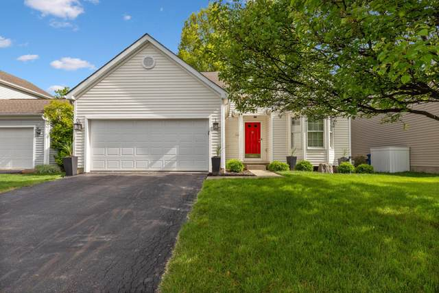 552 Thistleview Drive, Lewis Center, OH 43035 (MLS #221015807) :: The Jeff and Neal Team | Nth Degree Realty
