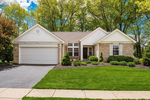 7627 Tullymore Drive, Dublin, OH 43016 (MLS #221015862) :: The Raines Group