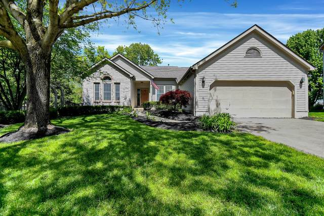 7764 Spyglass Hill Court, Pickerington, OH 43147 (MLS #221015902) :: Exp Realty