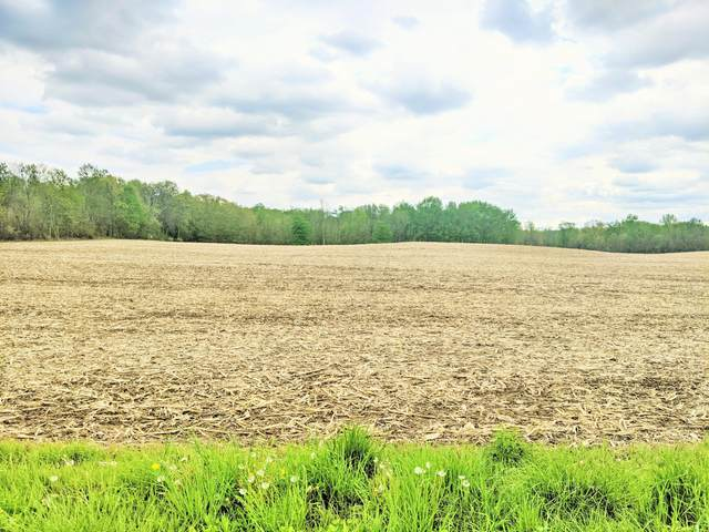 0 Township Road 183, Cardington, OH 43315 (MLS #221015911) :: LifePoint Real Estate