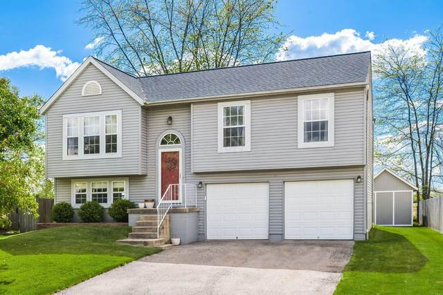 1451 Ginseng Drive, Galloway, OH 43119 (MLS #221015917) :: Susanne Casey & Associates