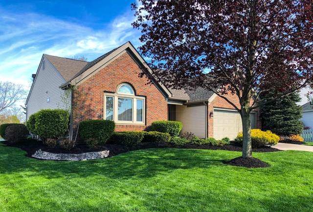 7685 Storrington Place, Lewis Center, OH 43035 (MLS #221015973) :: Berkshire Hathaway HomeServices Crager Tobin Real Estate