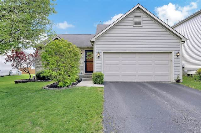 8563 Fernbrook Drive, Lewis Center, OH 43035 (MLS #221016007) :: Ackermann Team