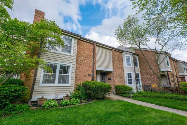 5099 Schuylkill Street, Columbus, OH 43220 (MLS #221016046) :: LifePoint Real Estate