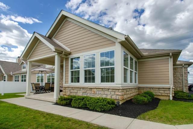 3634 Evelynton Avenue, Lewis Center, OH 43035 (MLS #221016052) :: LifePoint Real Estate