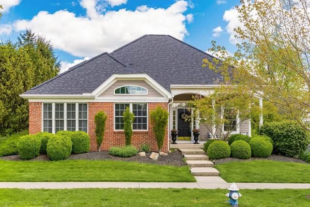 244 Carreg Cain Drive, Granville, OH 43023 (MLS #221016213) :: MORE Ohio