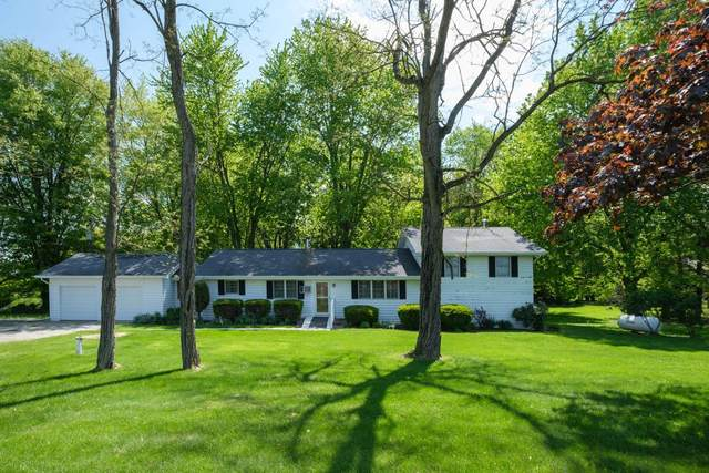 4117 Mink Street SW, Pataskala, OH 43062 (MLS #221016234) :: The Gale Group