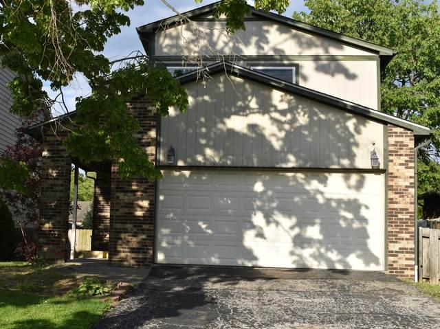908 Fortunegate Drive, Westerville, OH 43081 (MLS #221016452) :: Sam Miller Team