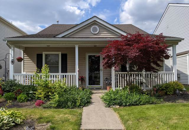 5408 Oconnell Street Cw, Canal Winchester, OH 43110 (MLS #221016746) :: MORE Ohio