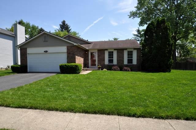 8200 Lone Tree Drive, Powell, OH 43065 (MLS #221016797) :: RE/MAX Metro Plus