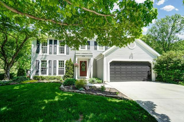 230 Clover Court, Dublin, OH 43017 (MLS #221016939) :: Bella Realty Group