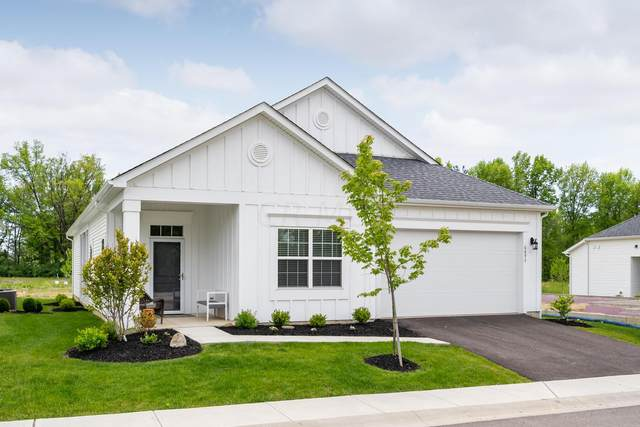 6893 Ringbill Loop, Sunbury, OH 43074 (MLS #221016956) :: Exp Realty