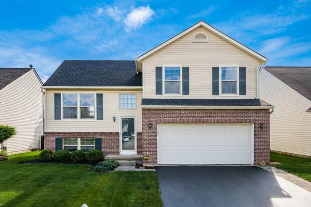 5497 Hillbrook Drive, Galloway, OH 43119 (MLS #221016997) :: Jamie Maze Real Estate Group