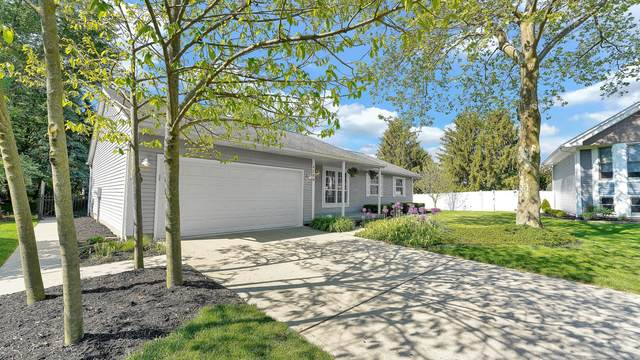 4789 Augustus Court, Hilliard, OH 43026 (MLS #221017095) :: The Tobias Real Estate Group