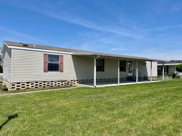 812 Youn Kin Parkway S, Columbus, OH 43207 (MLS #221017179) :: Jamie Maze Real Estate Group