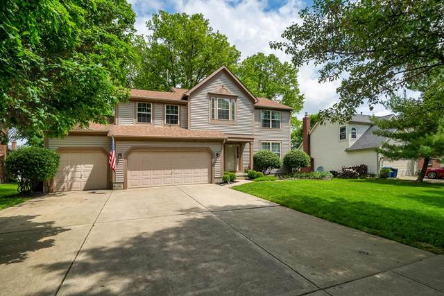 1054 Cloverly Drive, Columbus, OH 43230 (MLS #221017250) :: The Tobias Real Estate Group