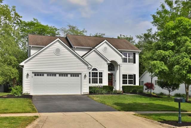 7683 Tree Lake Boulevard, Powell, OH 43065 (MLS #221017569) :: The Tobias Real Estate Group