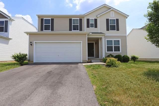 8701 Bobwhite Drive, Blacklick, OH 43004 (MLS #221017773) :: MORE Ohio