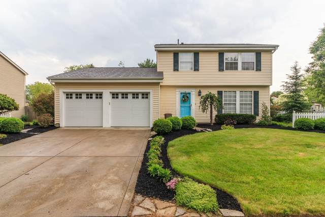 8493 Nuthatch Way, Columbus, OH 43235 (MLS #221017789) :: The Tobias Real Estate Group