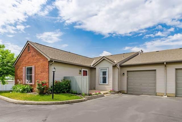 406 Lebon Drive, Sunbury, OH 43074 (MLS #221017859) :: Exp Realty