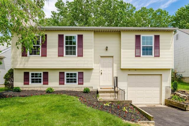 8640 Broadacre Drive, Powell, OH 43065 (MLS #221018069) :: The Tobias Real Estate Group