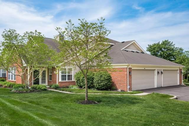 7474 Cherry Brook Drive, Reynoldsburg, OH 43068 (MLS #221018241) :: The Tobias Real Estate Group