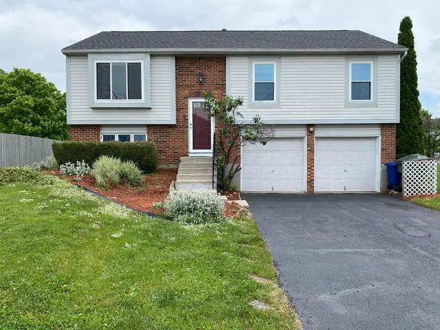 1000 Bootman Drive, Columbus, OH 43228 (MLS #221018263) :: Exp Realty