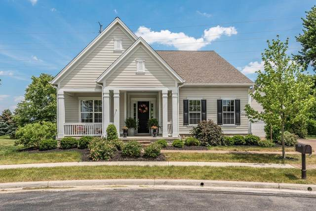 3778 Blue Water Court, Powell, OH 43065 (MLS #221018294) :: Exp Realty