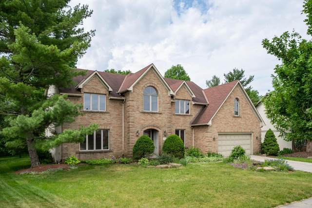 1127 Blue Heron Drive, Westerville, OH 43082 (MLS #221018324) :: Exp Realty