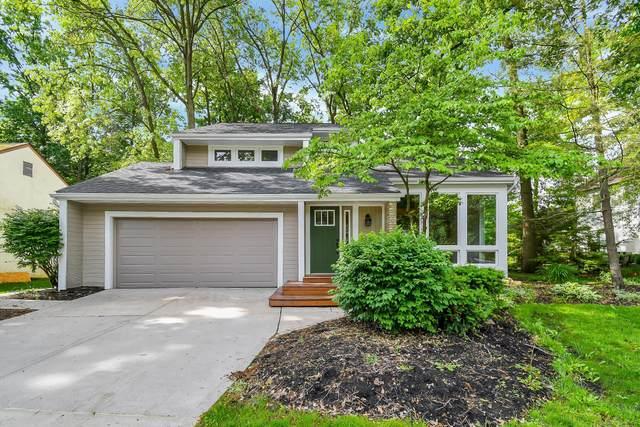 1133 Oakwood Lane, Westerville, OH 43081 (MLS #221018397) :: Exp Realty