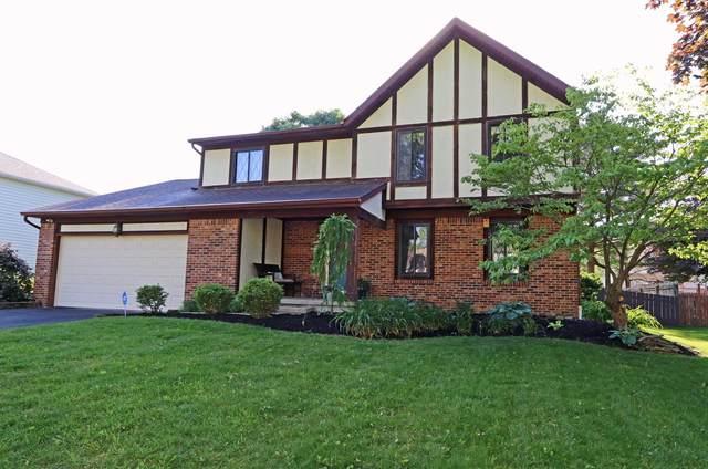 13568 Capetown Avenue, Pickerington, OH 43147 (MLS #221018423) :: Jamie Maze Real Estate Group