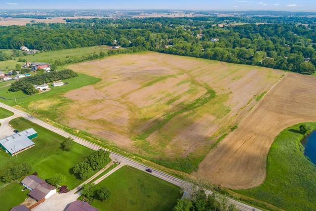 7890 Royalton Road SW, Lancaster, OH 43130 (MLS #221018439) :: Signature Real Estate