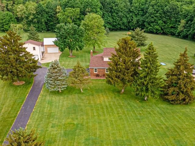 800 Africa Road, Galena, OH 43021 (MLS #221018468) :: Signature Real Estate