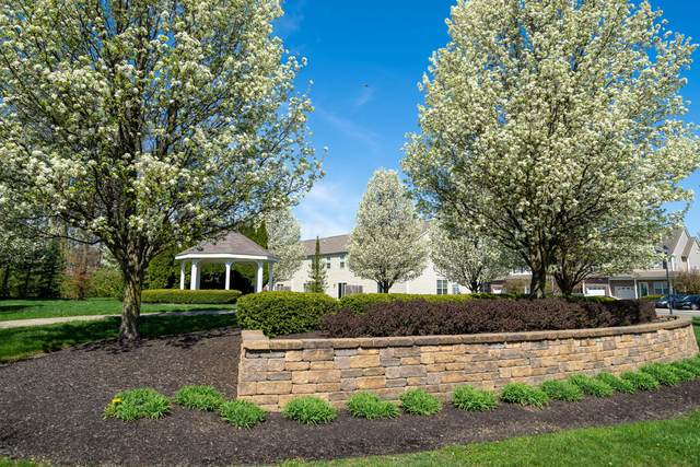 5527 Albany Terrace Way #1104, Westerville, OH 43081 (MLS #221018475) :: The Tobias Real Estate Group