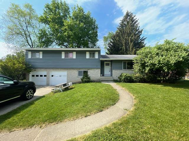 399 Potawatomi Drive, Westerville, OH 43081 (MLS #221018532) :: The Tobias Real Estate Group