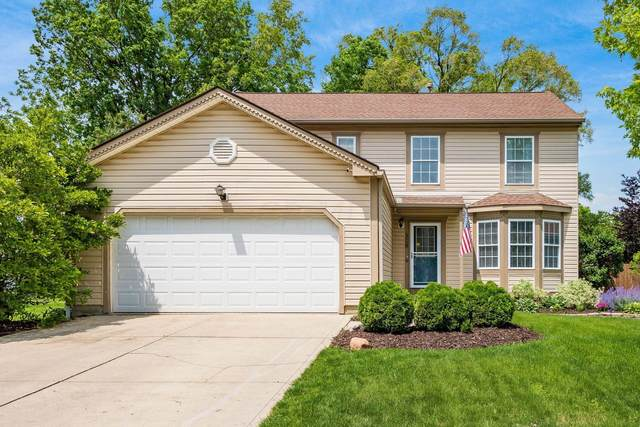 308 Marjoram Drive, Gahanna, OH 43230 (MLS #221018580) :: The Tobias Real Estate Group