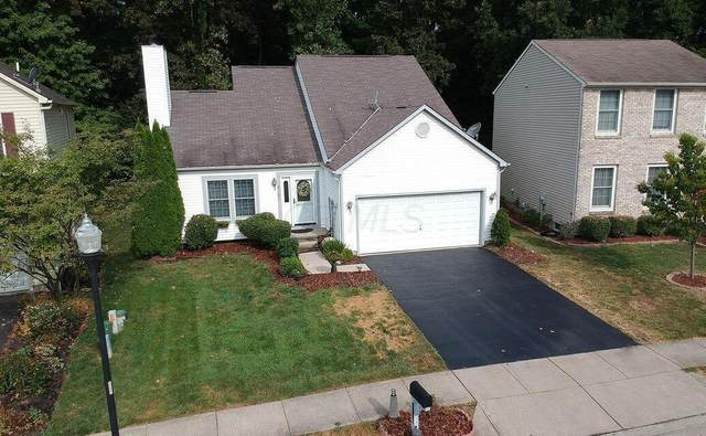 8753 Olenbrook Drive, Lewis Center, OH 43035 (MLS #221019055) :: The Tobias Real Estate Group