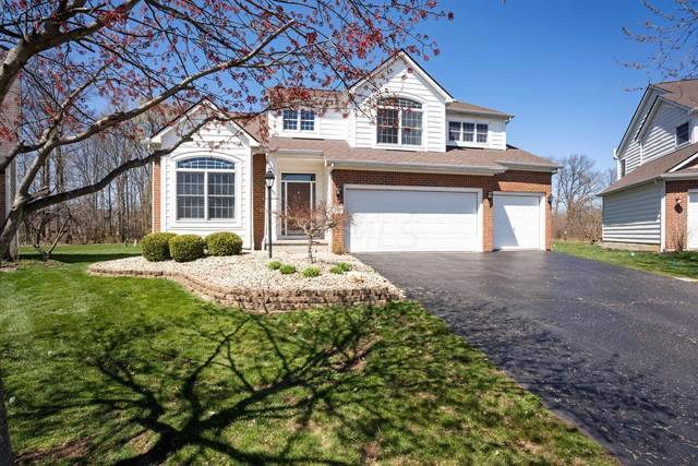 2097 Chicory Court, Lewis Center, OH 43035 (MLS #221019353) :: Shannon Grimm & Partners Team
