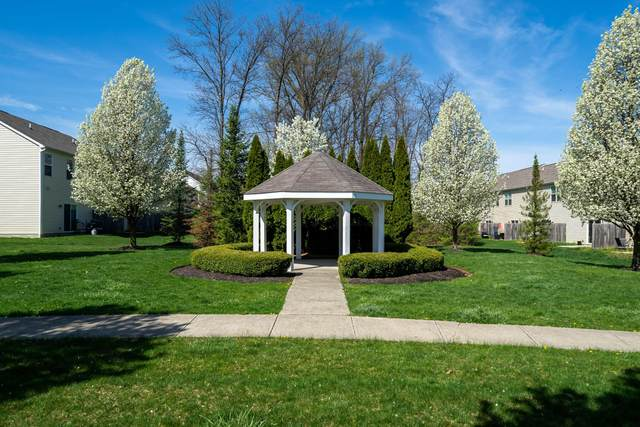 5535 Albany Terrace Way #1001, Westerville, OH 43081 (MLS #221019449) :: The Tobias Real Estate Group