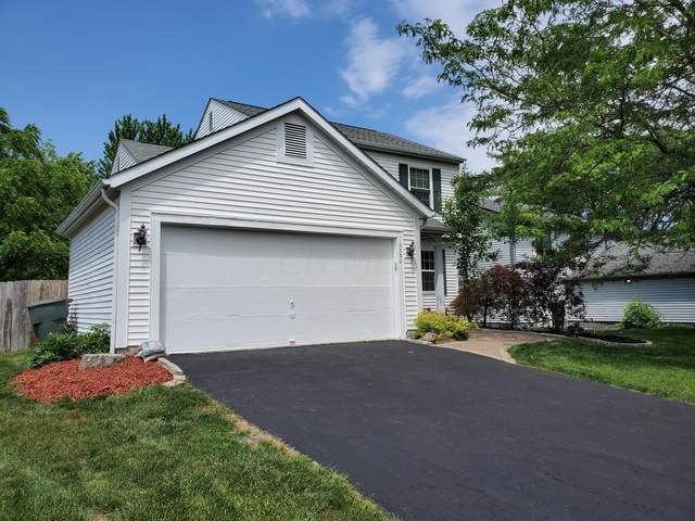 5530 Mid Day Drive, Galloway, OH 43119 (MLS #221019536) :: Sam Miller Team
