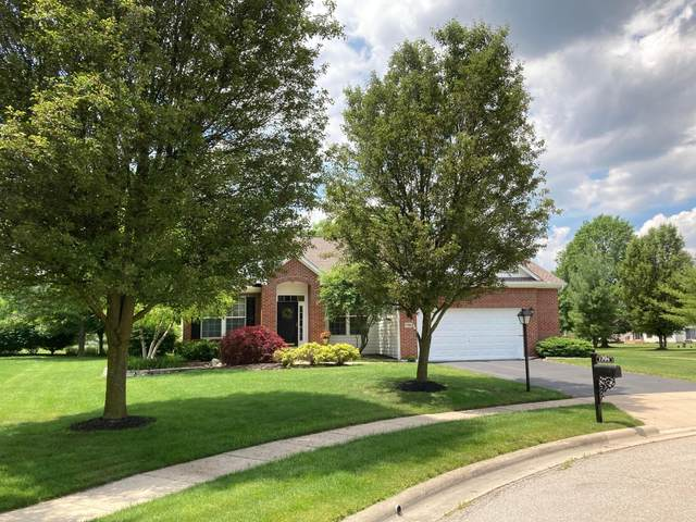 7706 Peck Court, Lewis Center, OH 43035 (MLS #221019675) :: Exp Realty