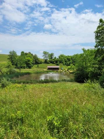 12605 Shady Grove Road, New Concord, OH 43762 (MLS #221019787) :: CARLETON REALTY