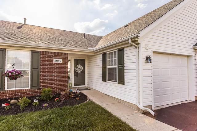8059 Ivory Gull Circle, Pickerington, OH 43147 (MLS #221019847) :: Exp Realty