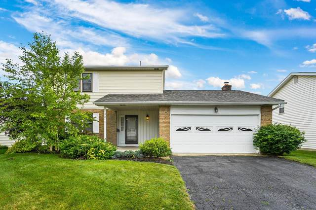 3211 Kingswood Drive, Grove City, OH 43123 (MLS #221020053) :: Exp Realty