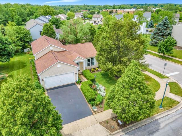 129 Overtrick Drive, Delaware, OH 43015 (MLS #221020171) :: The Holden Agency