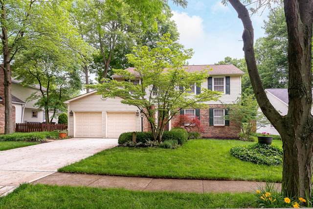 764 Suntree Drive, Westerville, OH 43081 (MLS #221020372) :: The Holden Agency