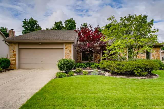 1000 Vincent Court, Westerville, OH 43081 (MLS #221020427) :: The Holden Agency