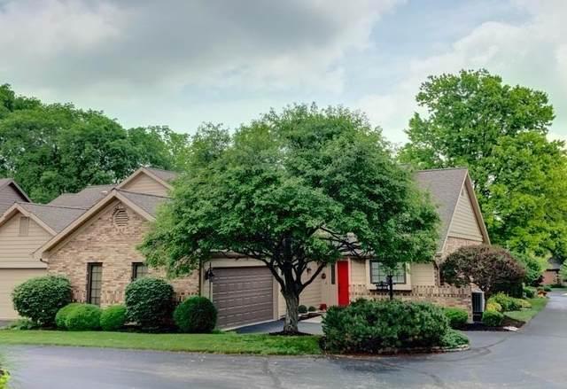 569 Cottingwood Court, Dayton, OH 45429 (MLS #221020536) :: CARLETON REALTY
