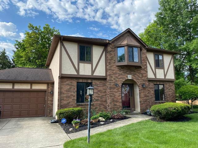 266 Rockbourne Court, Westerville, OH 43082 (MLS #221020898) :: Exp Realty