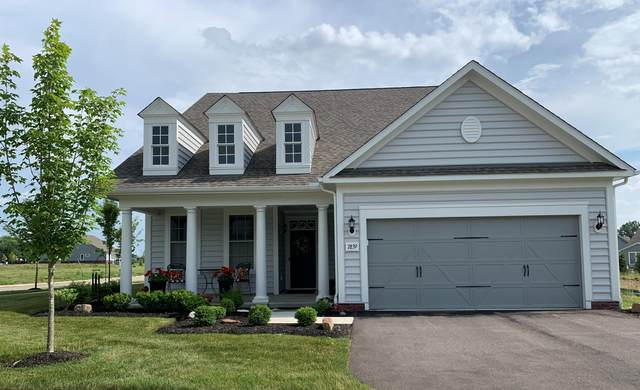 7839 Eastcross Drive, New Albany, OH 43054 (MLS #221020910) :: MORE Ohio